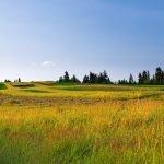 Cortacésped manual para hierba alta: El único capaz